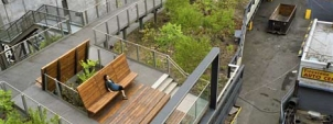 The high line - Section 2